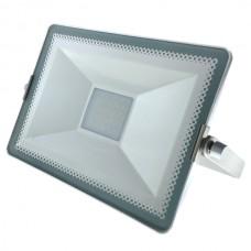 "30W, LED prožektors, bez draivera (driverless), ""SILVER LINE"", 2700Lm, IP65"